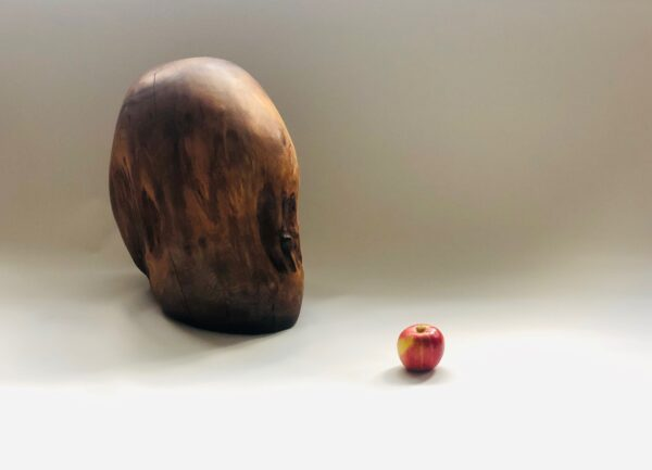 Wild Oval Collection Sculptures